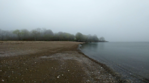 Dead Horse Beach in the fog